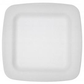 Piatto Termici EPS Bianco 260 mm (600 Uds)