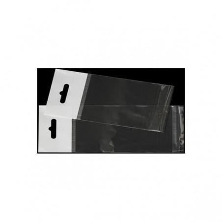 Sacchetti Polietilene BOPP Piega Adesivo e Foro Europeo 23x32cm G160 (1000 Uds)