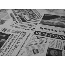 "Tovaglia di Carta Taglio 1x1m ""Stampa"" 37g (400 Pezzi)"