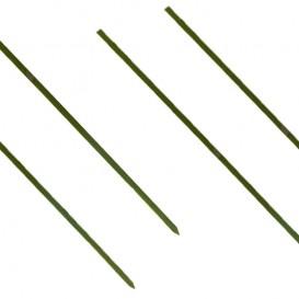 Spiedi di Bambu Verde Naturale 250mm (5000 Pezzi)