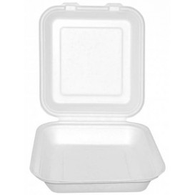 Contenitori Canna da Zucchero Bianco 20x20x7,5cm (50 Pezzi)