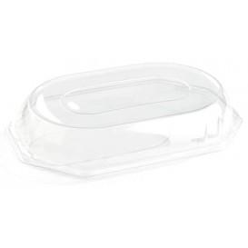 Coperchio Plastica per Vassoio di 46x30x7 cm (50 Pezzi)