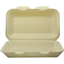 Contenitori Polistirolo LunchBox Champagne 240x155x70mm (500 Pezzi)