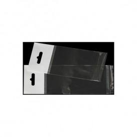 Sacchetti Polipropilene BOPP Piega Adesivo e Foro Europeo 13,5x21cm G160 (100 Pezzi)