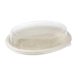 Coperchio Cupola plastica PP per Vassoio 240x170mm (50 Pezzi)