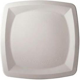 Piatto Quadrato Bianco Canna Zucchero 25x25cm (500 Pezzi)