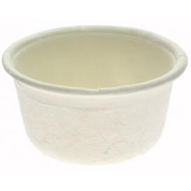 Coppetta Bio Canna Zucchero Bianco Ø6,2cm 60ml (2500 Pezzi)