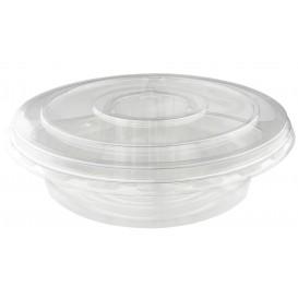 Ciotole di Plastica PET 4C e Coperchio Ø26x7cm (100 Pezzi)