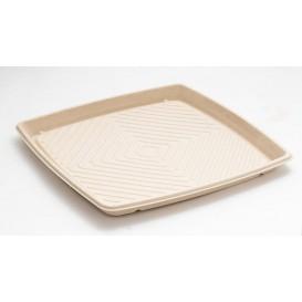 Vassoio Canna da Zucchero Quadrato Naturale 36x36cm (25 Pezzi)