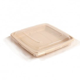 Coperchio plastica PP per Contenitori 23cm (25 Pezzi)