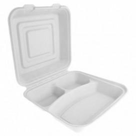Contenitori Canna da Zucchero Bianco 3S 24x23x7,6cm (200 Pezzi)