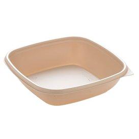 Contenitori di Plastico PP Crema 500ml 16,5x16,5x4cm (50 Pezzi)